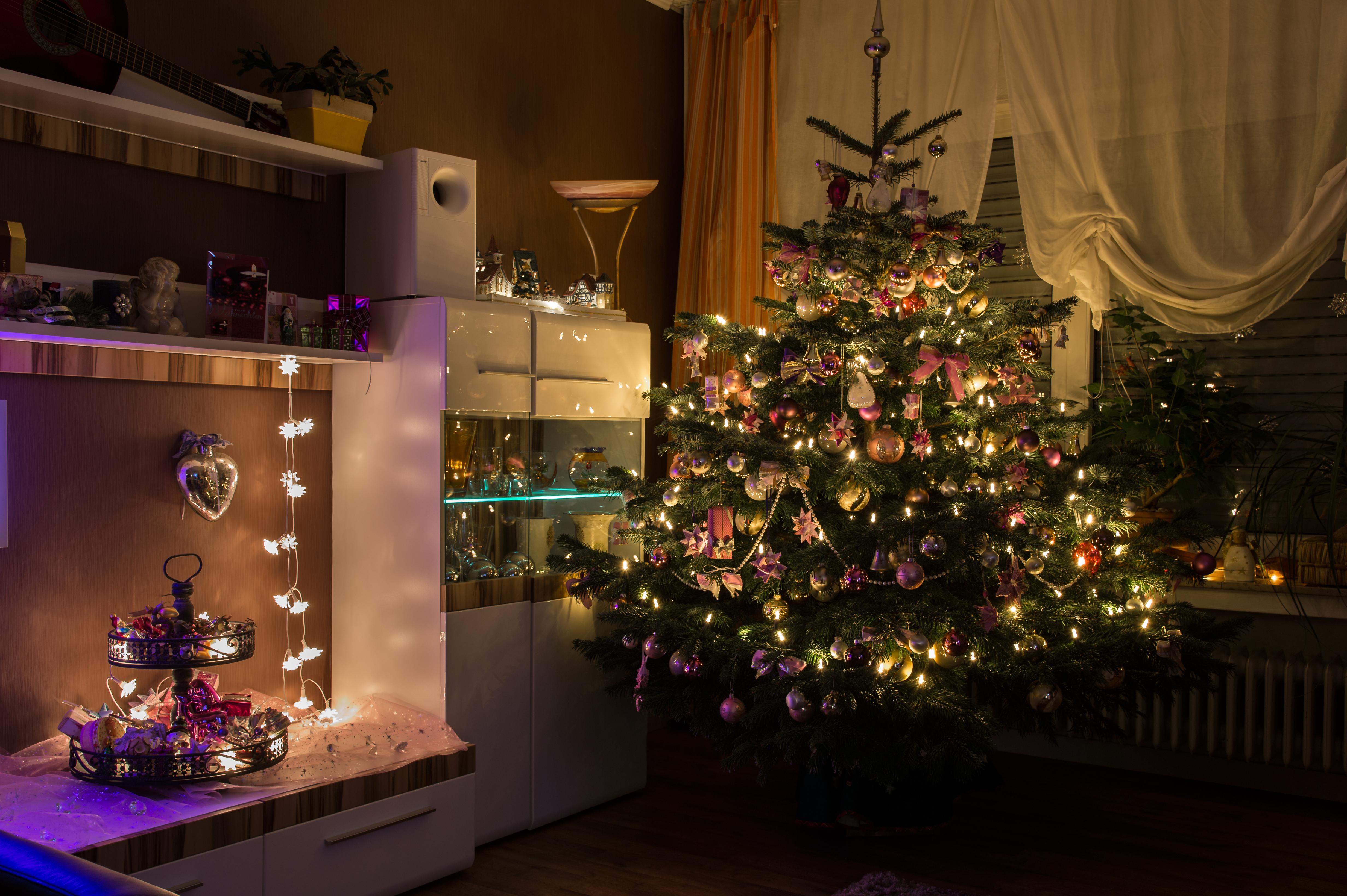 Echt Kerstboom Online Bestellen Save The Mama
