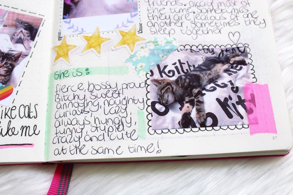 Huisdieren bullet journal
